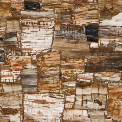 Caesarstone Concetto 8331 Petrified Wood Classic